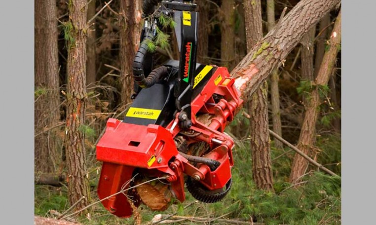 tete abattage forestier waratah